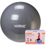 Minge fitness Techfit 65cm 1100 g Multicolor + Cadou mini lanterna