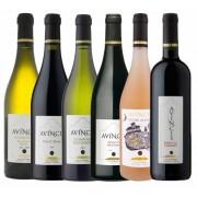 Avincis, Selectie 6 Vinuri Premium
