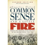 Common Sense and a Little Fire: Women and Working-Class Politics in the United States, 1900-1965, Paperback/Annelise Orleck