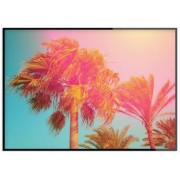 Poster, Tropical Wind (30x40 cm)