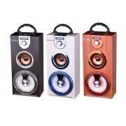 Hordozható hangszóró Bluetooth multimédia lejátszó Led világítás akkumulátorral Mp3,FM-Rádió, 3,5 jack, USB, Micro SD kártya 35x16cm - KA-B10
