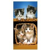 TOALHA PRAIA VELUDO CATS 60379 - BOUTON - AZUL/BEGE