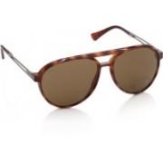 Tod's Aviator Sunglasses(Brown)