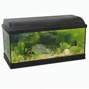 PACIFIC -100 akvárium s výbavou 120l 100x30x40cm 1x30W