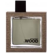 Dsquared² He Wood Rocky Mountain Wood Eau de Toilette 100 ml
