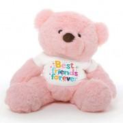 Pink 2 feet Fur Face Big Teddy Bear wearing a Best Friends Forever T-shirt