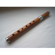 D - dvodelna frula - Za Koncerte ili Studijsko snimanje