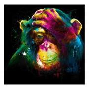 30*30cm Color Monkey BORDADO Bordado Bricolaje Diamantes Bañados En Pintura 5D