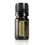 Cardamom - Essential Oil 5ml