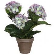 Mica Decorations Groene/paarse Hortensia kunstplant 40 cm in pot