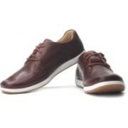Clarks Newton Flow Corporate Casuals For Men(White, Brown, Beige)