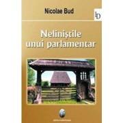 Nelinistile unui parlamentar/Nicolae Bud