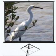 "Екран Elite Screen T99UWS1 Tripod, 99"" (1:1), 177.8 x 177.8 cm, Black - T99UWS1"