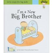 I'm a New Big Brother