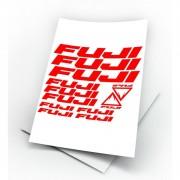 FUJI kit adesivi bicicletta colori personalizzati anche fluo