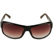 Image Retro Square Sunglasses(Brown)