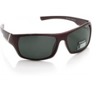 Polaroid Sports Sunglasses(Grey)