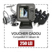 Voucher Cadou 250 Lei
