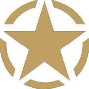 CUSTOMISED STAR GOLDEN STICKER FOR BIKE /CAR- 2 pieces