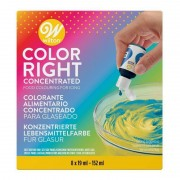 Wilton Kit de 8 colorants alimentaires Color Right