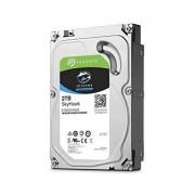 Seagate SkyHawk 2TB Surveillance Hard Drive SATA 6Gb/s 64MB Cache 3.5-Inch Internal Drive (ST2000VX008), Silver
