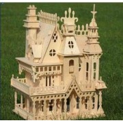 Nwfashion 17 Wooden Dream Dollhouse 2 Floors With Furnitures Lights Diy Kits Miniature Doll House (Dream House)