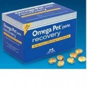 N.B.F. LANES Srl Omega Pet Recovery 120 Perle