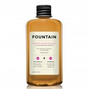 Fountain FONTANA Il Phyto Collagene Molecola (240ml)