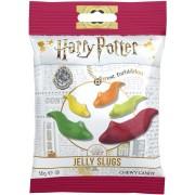 Harry Potter Jelly Slugs Gummi Slakken