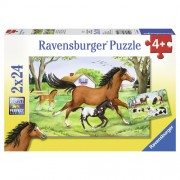 PUZZLE LUMEA CAILOR, 2x24 PIESE