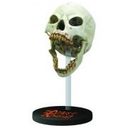 Gentle Giant Studios 30 Days Of Night: Large Female Vampire Skull