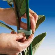 Banda dublu adeziva pentru plante