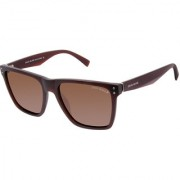 David Blake Brown Wayfarer Polarized & UV Protected Sunglass
