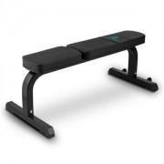 Sport capital plat B banc plat bancă gantera Steel 250 kg negru (FIT20-Robustar)