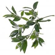 Bellatio flowers & plants Kunst laurierblad tak van 48 cm