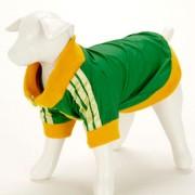 Chandal Verde Perro