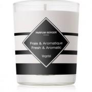 Maison Berger Paris Anti Odour Tobacco lumânare parfumată II. (Fresh & Aromatic) 180 g