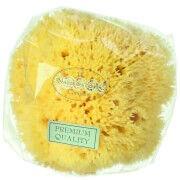 Hydrea London Honeycomb Sea Sponge, storlek 10–11,5 cm