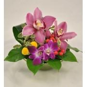 Aranjament floral cu orhidee cymbidium si dendrobium