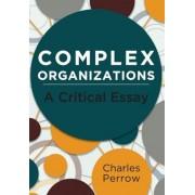 Complex Organizations: A Critical Essay, Paperback