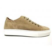Pantofi Sport Dama Sneaky Steve Jervis Low Bej