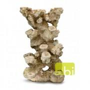 EBI AQUA DELLA CORAL REEF XL 33x24x49cm, for 13 corals