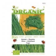Bio zaden Organic Bieslook Prager