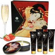 ART Shunga Erotic Art Geisha Secret Kit - Wine Strawberry - kit del piacere