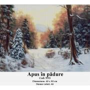 Apus in padure (kit goblen)