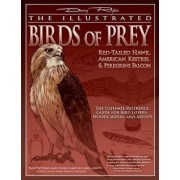 The Illustrated Birds of Prey: Red-Tailed Hawk, American Kestrel & Peregrine Falcon: The Ultimate Reference Guide for Bird Lovers, Woodcarvers, and Ar, Paperback/Denny Rogers
