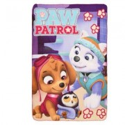 PAW Patrol Skye & Everest pläd filt