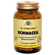 Solgar Echinacea 100 Capsule Veg