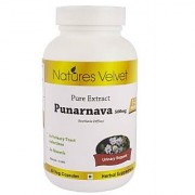 Punarnava 500mg Pure Extract 60 Veg Capsules By Natures Velvet