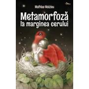 Metamorfoza la marginea cerului/Mathias Malzieu